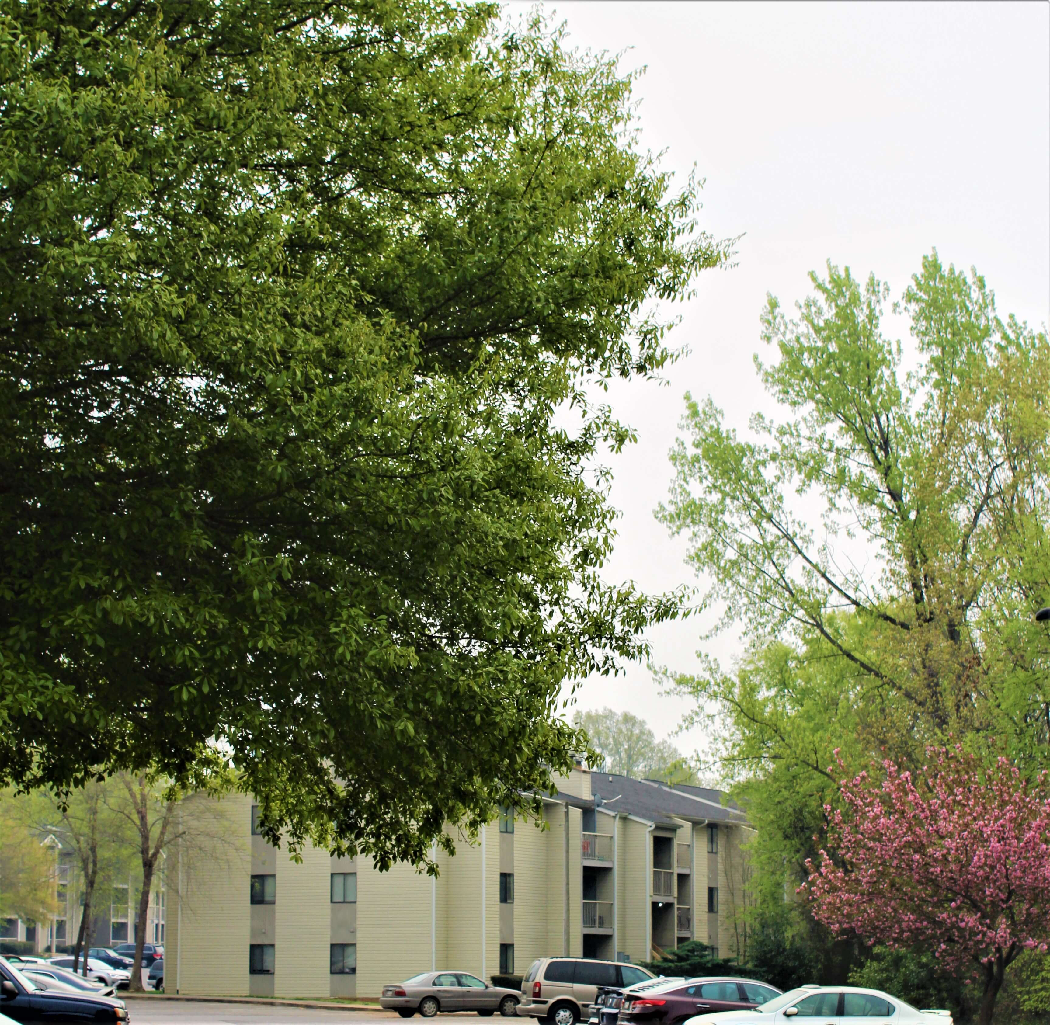 Stone Haven Pointe Apartments, Rock Hill, SC (803)981-7600